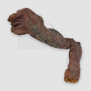 The Fly Animatronic Fly Arm Movie Prop